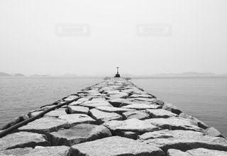 海の近くの岩の上に座って鳥の群れの写真・画像素材[721834]