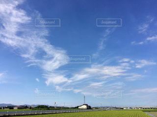 秋の空の写真・画像素材[724277]