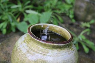 斎場御嶽の水瓶の写真・画像素材[722924]