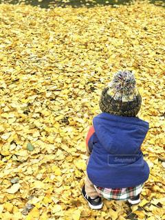草の中に立っている小さな男の子の写真・画像素材[931610]