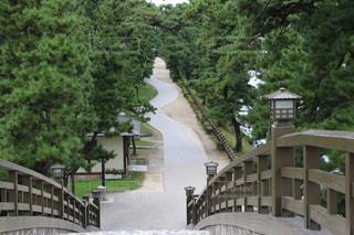 奥の細道を歩く。の写真・画像素材[771324]