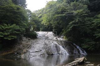 静かなる滝!の写真・画像素材[2480215]