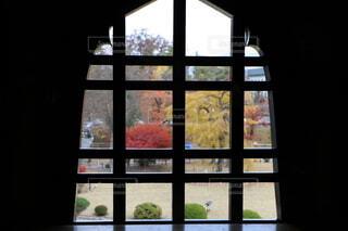 窓ごしの紅葉。の写真・画像素材[3889591]