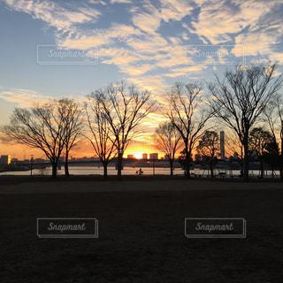 冬の夕暮れの写真・画像素材[724088]