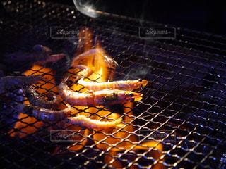 海老の網焼きと炭火の写真・画像素材[730549]