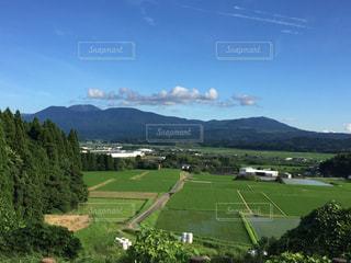 緑豊かな丘の中腹に緑のビューの写真・画像素材[725262]