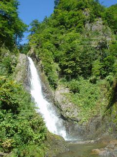 森の中の大きな滝の写真・画像素材[725905]