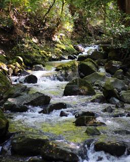 川の流れの写真・画像素材[833595]