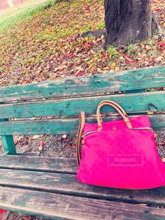 公園で一休み(*^ω^*) - No.871594