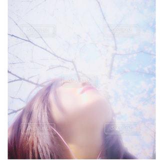 お花見🌸の写真・画像素材[1090007]