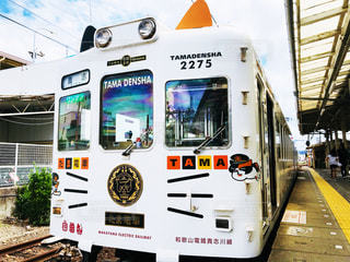人気のたま電車の写真・画像素材[1418305]