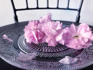 可愛い桜の花の写真・画像素材[2055817]