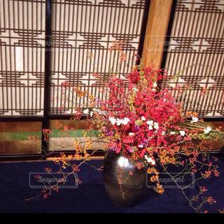 生け花の写真・画像素材[931996]