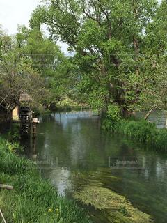 水車小屋のある風景の写真・画像素材[728672]