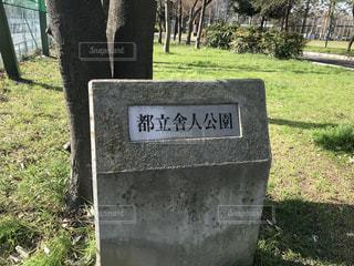 舎人公園の写真・画像素材[3039734]