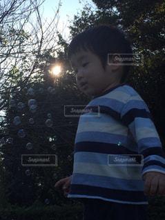シャボン玉の写真・画像素材[728221]