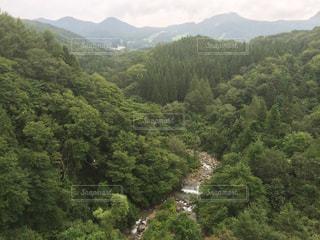 背景の山と森 - No.728920