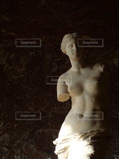 ミロのヴィーナスの写真・画像素材[1436668]