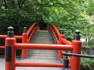 橋の先にあるのはの写真・画像素材[807918]