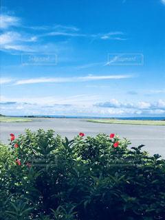 屋久島空港の写真・画像素材[1861470]