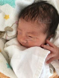 新生児の写真・画像素材[731380]