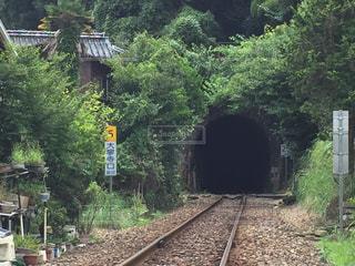 鉄道トンネルの写真・画像素材[730594]