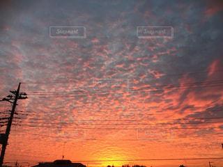 冬の朝の写真・画像素材[730811]