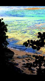 beautiful colorful beachの写真・画像素材[731117]