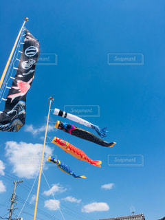 天高く泳ぐの写真・画像素材[2207094]