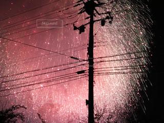 花火の写真・画像素材[731344]