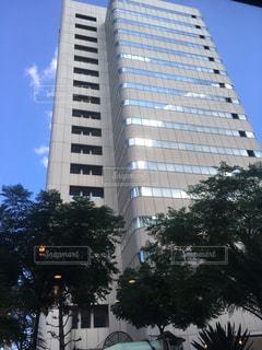 背の高い建物の写真・画像素材[731673]