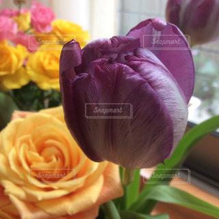 テーブルの上の花の花瓶の写真・画像素材[732477]