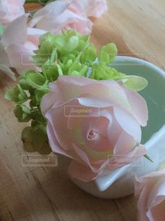 優しいバラのまなざしの写真・画像素材[796265]