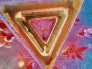 金魚の万華鏡の写真・画像素材[767563]