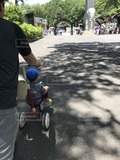 動物園に向かっての写真・画像素材[733543]