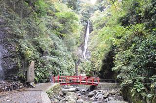洒水の滝の写真・画像素材[1017284]