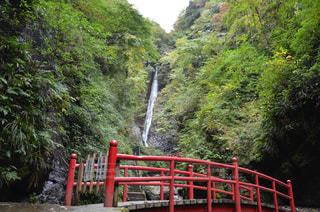 洒水の滝の写真・画像素材[1017287]