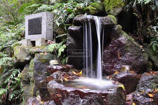 名水百選洒水の滝の写真・画像素材[1018063]