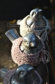 雀の像の写真・画像素材[1021971]