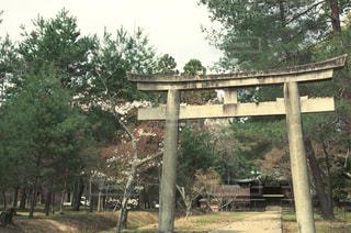 古都京都の写真・画像素材[1050515]