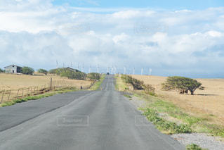 風力発電の写真・画像素材[3090138]