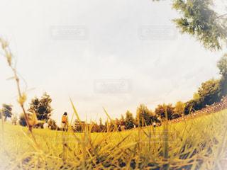 木の隣に立っている人のグループの写真・画像素材[818827]