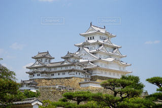 姫路城の写真・画像素材[763848]