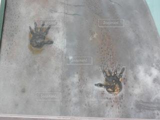 岩手の鬼の手形 - No.740484