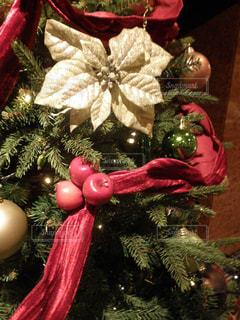 クリスマス ツリーと赤い花 - No.740499