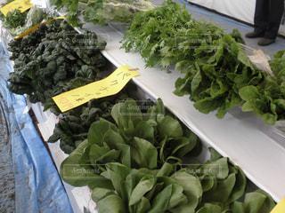 野菜マーケット - No.740502