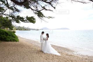 ハワイのビーチでウエディングフォト - No.740504
