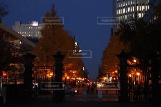 秋の写真・画像素材[832307]