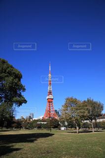 青空に立つ東京タワーの写真・画像素材[941910]