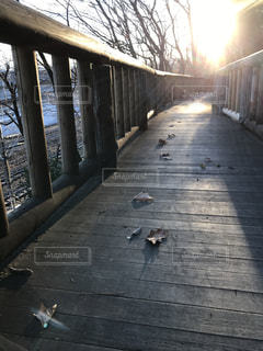 木の橋で朝を迎えての写真・画像素材[943005]